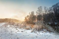 在河的冬天有薄雾的早晨 农村有雾和冷淡的场面 免版税库存照片