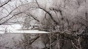 在河的冬天 图库摄影