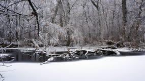 在河的冬天 免版税库存照片