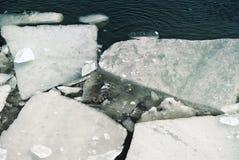 在河的冰漂泊在春天 免版税库存照片