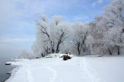 在河的冷淡的冬日 图库摄影