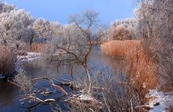 在河的冷淡的有薄雾的早晨 免版税库存照片