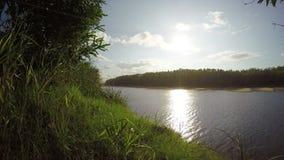 在河的夏天晴天 背景蓝色云彩调遣草绿色本质天空空白小束 股票录像