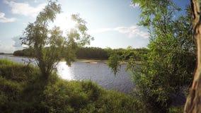在河的夏天晴天 背景蓝色云彩调遣草绿色本质天空空白小束 4K 影视素材