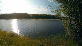 在河的夏天晴天 背景蓝色云彩调遣草绿色本质天空空白小束 4K 股票视频
