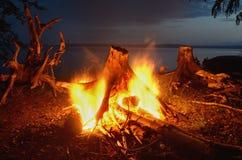 在河的夜篝火 免版税库存照片