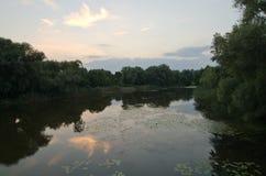 在河的夜间 库存照片