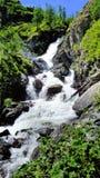 在河的大美丽的瀑布。 免版税库存照片