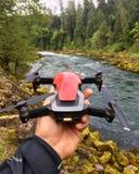 在河的寄生虫飞行 库存照片