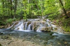 在河的小小瀑布 免版税库存照片