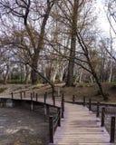 在河的小桥梁在vajdahunyad的布达佩斯森林里 免版税库存照片