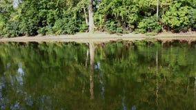 在河的小船乘驾有反射在水外面的树的 股票视频