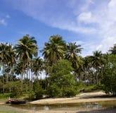 在河的小船在椰子树下 免版税库存图片