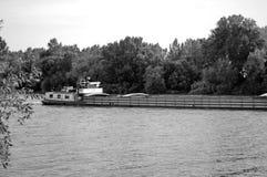 在河的小船有森林的在背景中 免版税库存图片