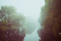 在河的早晨雾 免版税库存照片