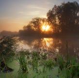 在河的早晨 库存照片