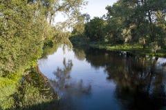 在河的早晨 免版税库存图片
