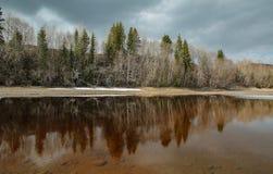 在河的春天洪水 库存图片