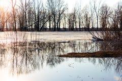 在河的春天洪水 免版税库存图片