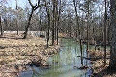 在河的晴朗的冬日 免版税库存图片