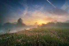 在河的有薄雾的早晨 免版税库存照片