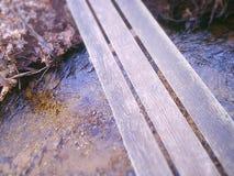 在河的木板走道 免版税图库摄影