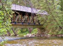 在河的木被遮盖的桥 库存图片