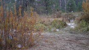 在河的河岸在灌木附近的站立慢慢地下雪的ATV和的吉普, HD 股票视频