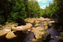 在河的石头在绿色森林,捷克,8月里 免版税库存照片