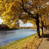 在河的秋天 免版税库存照片