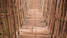 在河的竹吊桥在热带森林,保和省,菲律宾里 影视素材