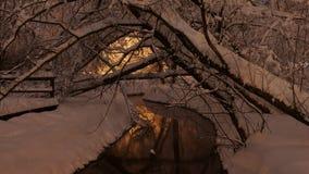 在河的美好的冬天场面 免版税图库摄影