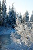 在河的美好的冬天日落在俄罗斯 库存照片