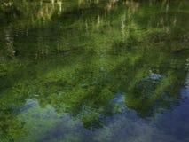 河反射 免版税图库摄影