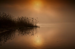 在河的美妙,有雾,红色日出在夏天 水平 免版税库存照片