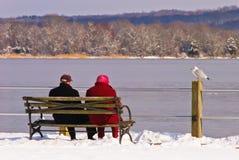 在河的老夫妇在冬天 免版税库存照片