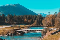 在河的老桥梁在乡下 免版税库存照片
