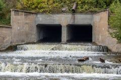 在河的老水坝 库存图片