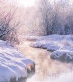 在河的蒸汽 33c 1月横向俄国温度ural冬天 在结构树的树冰 免版税库存图片