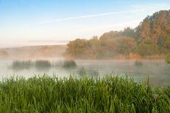 在河的薄雾早晨 免版税库存照片