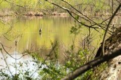 在河的起重机 免版税库存图片