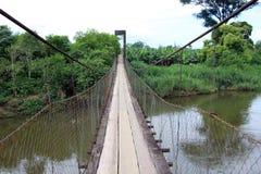 在河的钢索桥 库存图片