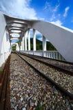 在河的铁路桥多云的 免版税库存照片