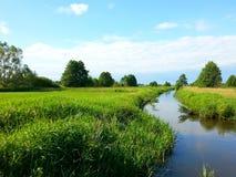 在河的风景 库存照片