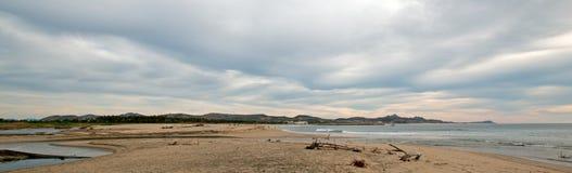 在河跳船海滩的漂流木头在圣何塞在Cabo圣卢卡斯附近的台尔Cabo在下加利福尼亚州墨西哥 库存照片