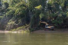在河附近的挖掘机缩短的竹森林 免版税库存照片
