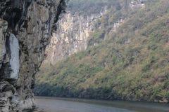 在河附近的自然 免版税库存图片
