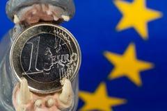 在河马小雕象的嘴的欧洲硬币 库存照片