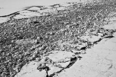 在河黑白照片的破裂的冰 免版税库存图片