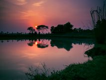 在河,湖的日落剪影 库存图片